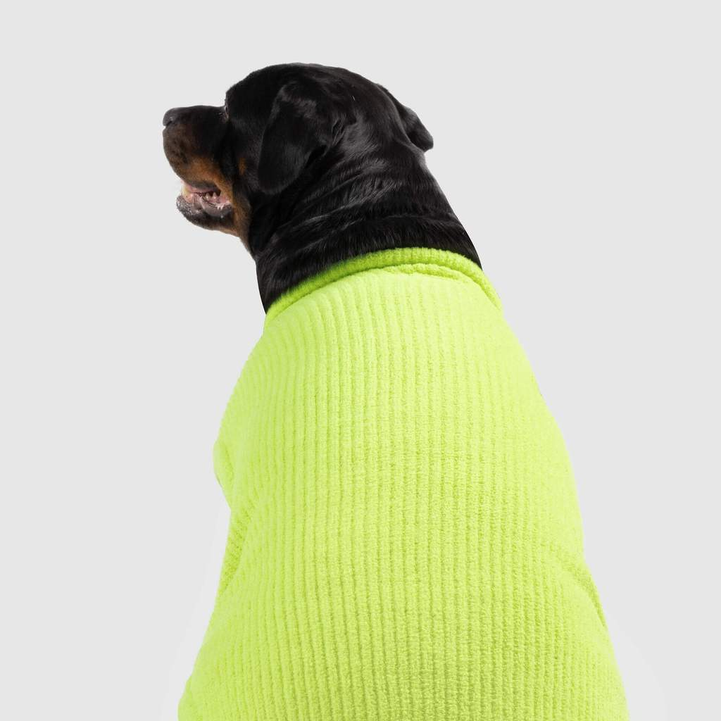 Highlighter Sweater in Green (FINAL SALE)