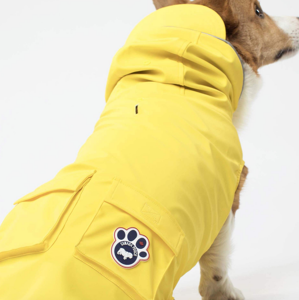 Torrential Tracker Dog Raincoat in Yellow