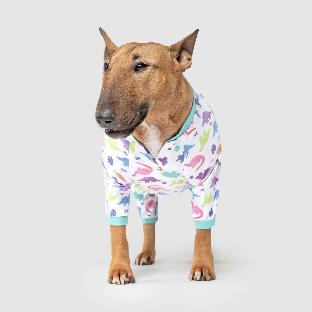 CANADA POOCH | Weekend Onesie in Dinosaur
