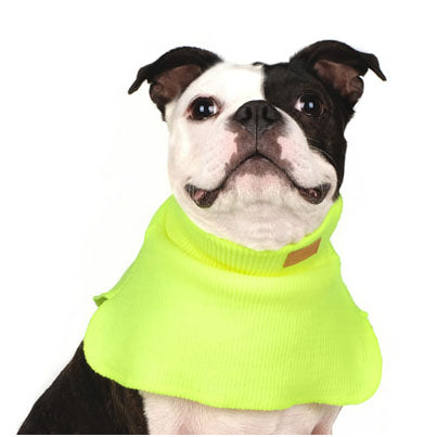 CHARLIE'S BACKYARD | Dickie Turtleneck Warmer in Neon Yellow