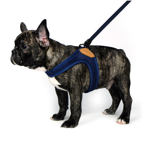 Adjustable Easy Harness in Navy