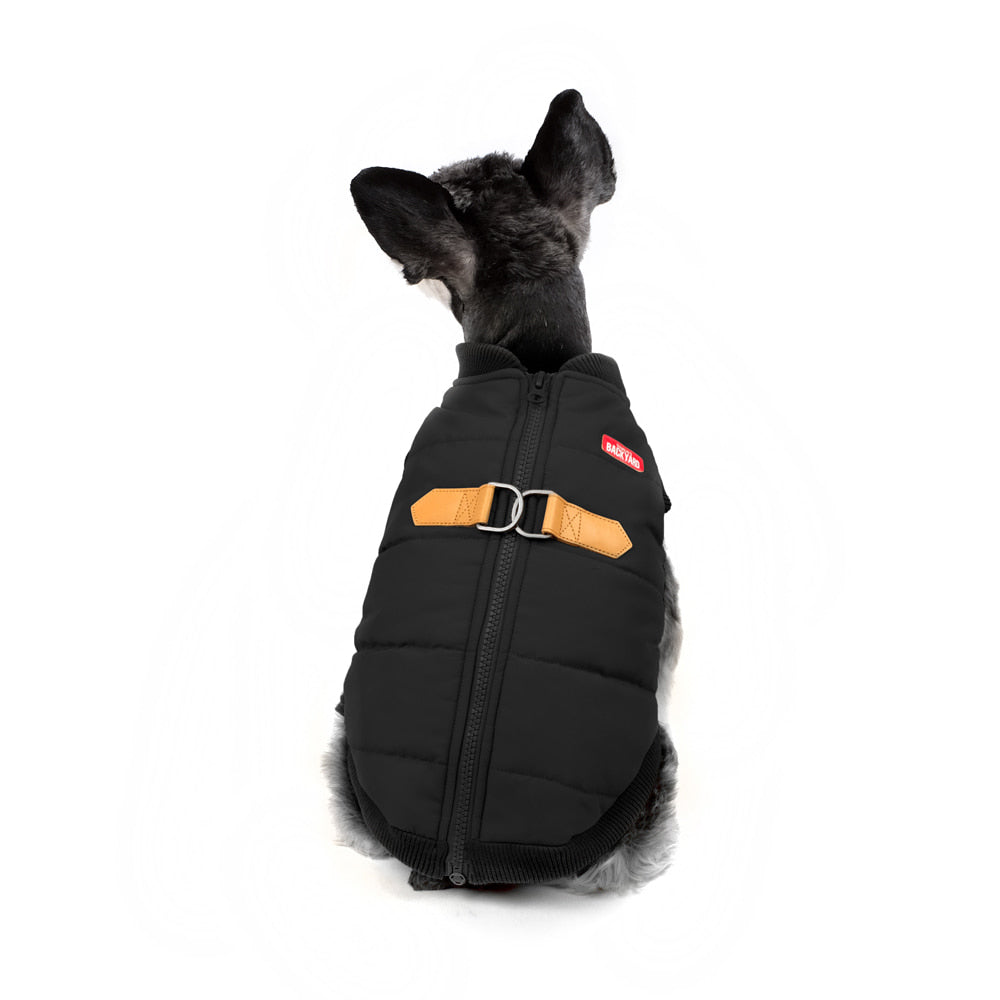 CHARLIE'S BACKYARD | Harness Jacket in Black