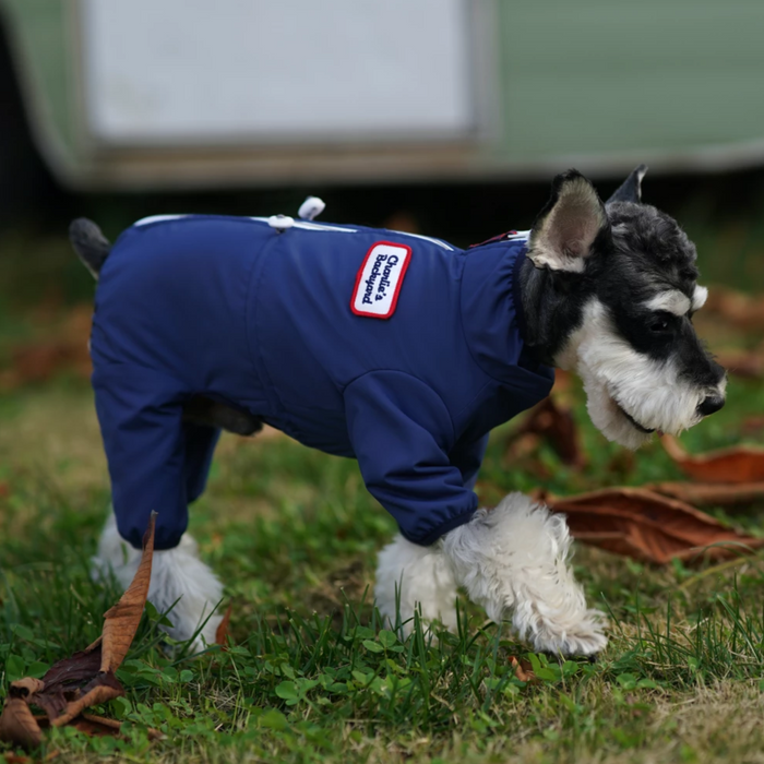 CHARLIE'S BACKYARD | Mechanic Suit in Navy