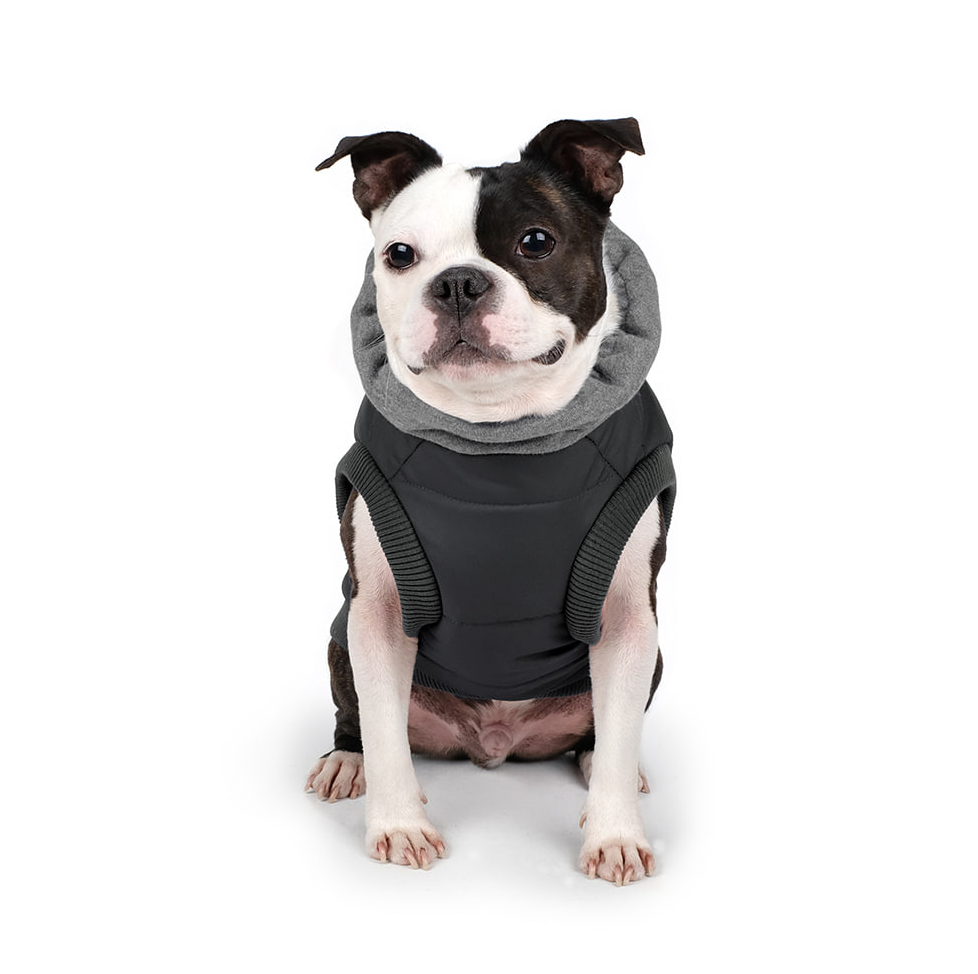 Warm Up Harness Jacket in Black (FINAL SALE)