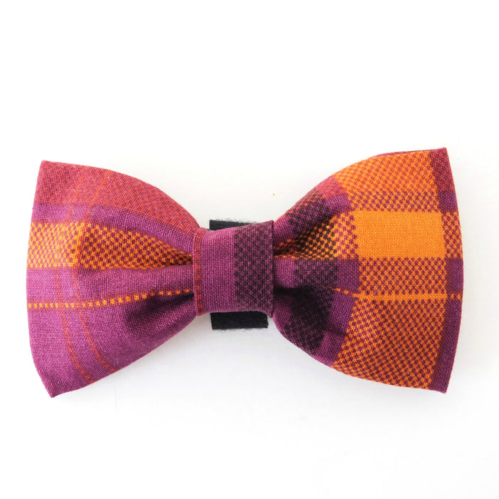 CHARLOTTE'S PET | Purple Plaid Bow Tie