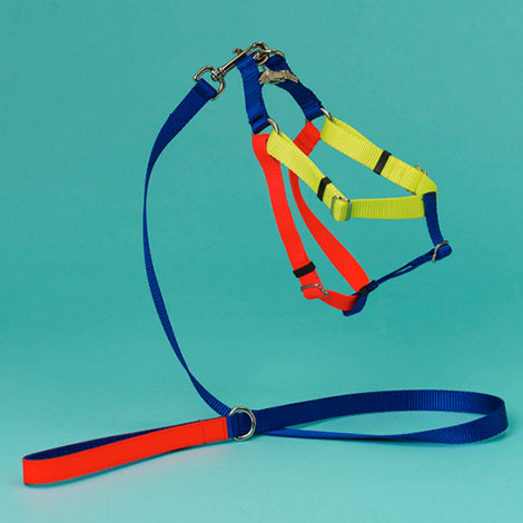 Colorblock Harness in Blue