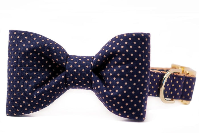 CREW LA LA | Navy & Gold Dot Bow Tie