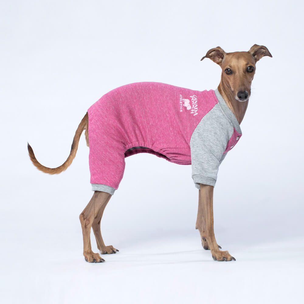 CANADA POOCH | Frosty Fleece Sweatsuit in Rasberry