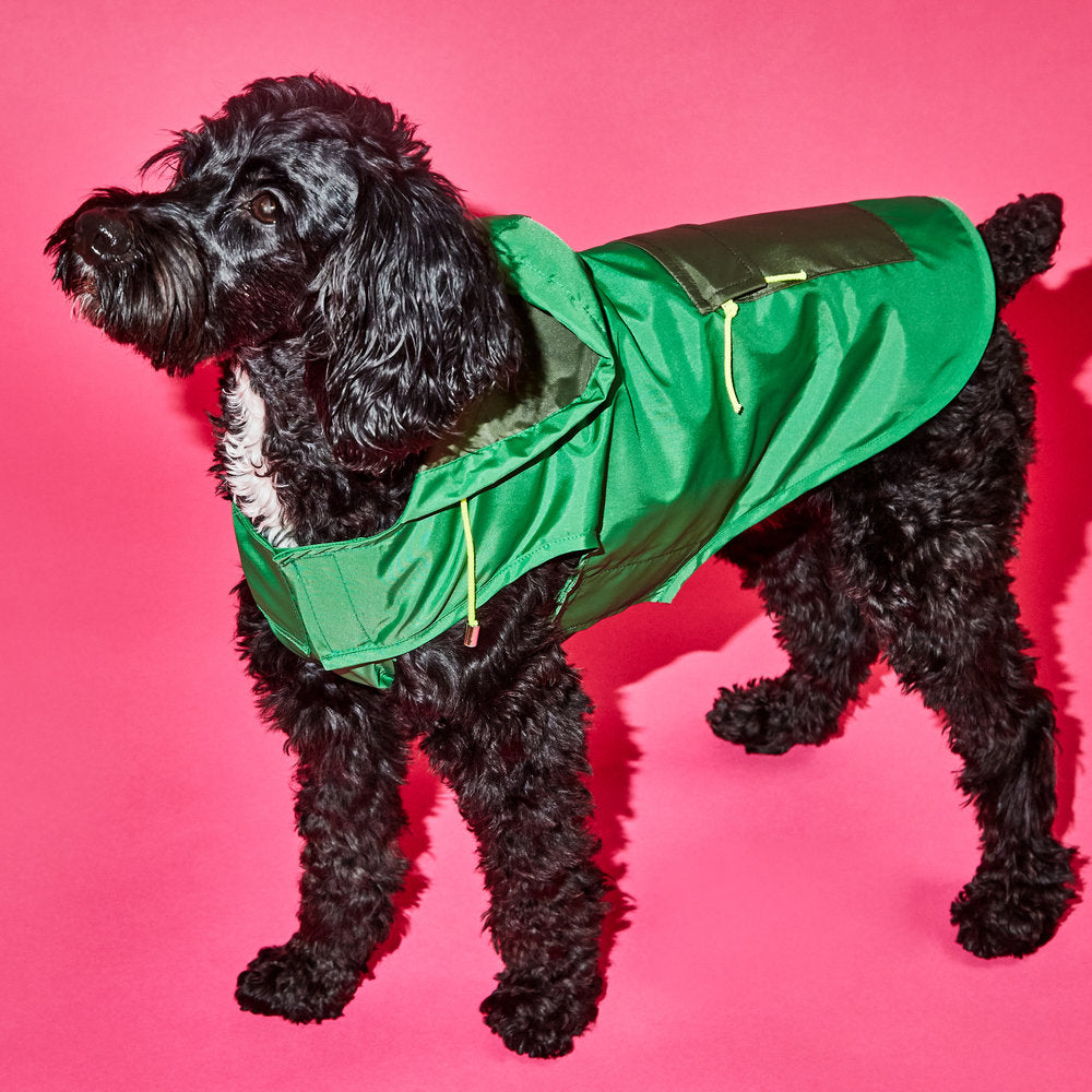 WARE OF THE DOG | Colorblock Anorak Raincoat in Green/Olive