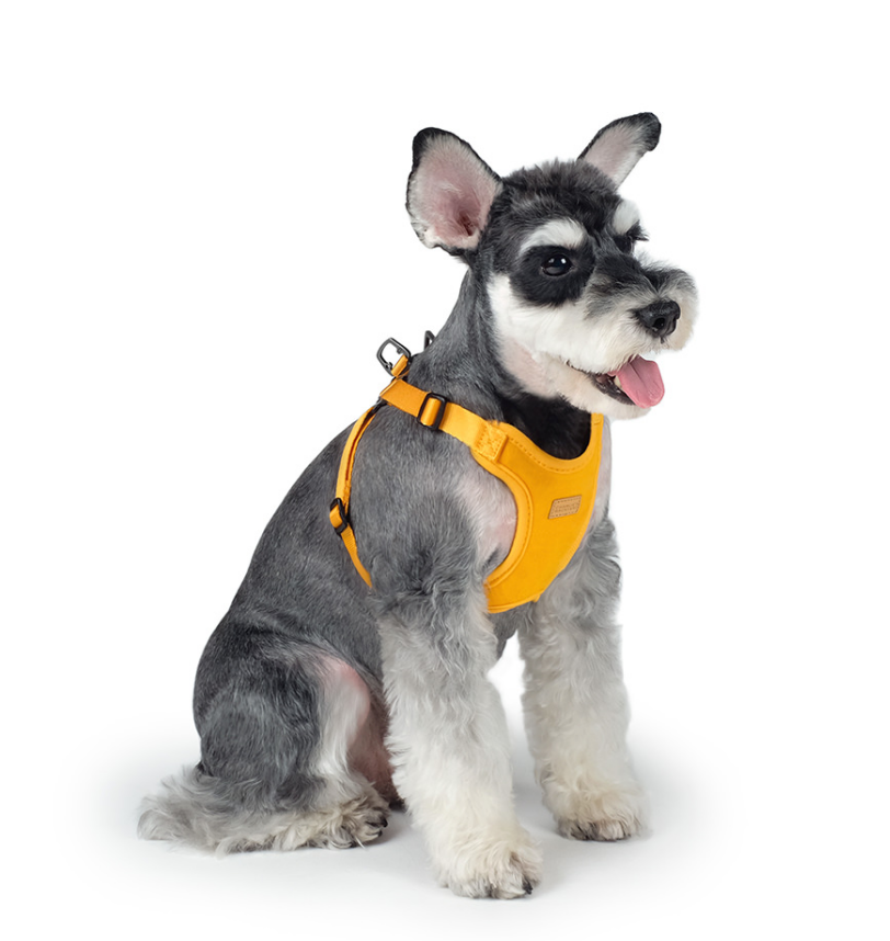 Comfort Dog Harness in Yellow