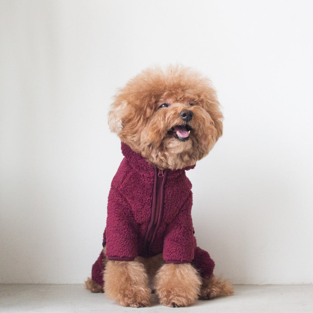 DENTISTS APPOINTMENT | Boa Fleece All-in-One in Burgundy