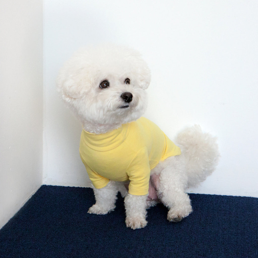 Body Warm Turtleneck in Lemon Yellow (FINAL SALE)