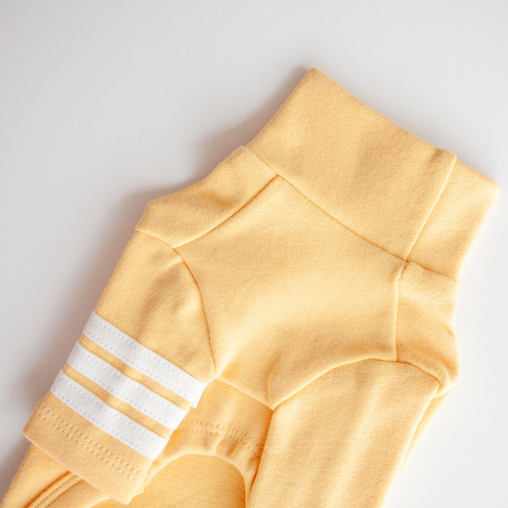 Striped Point Turtleneck in Yellow