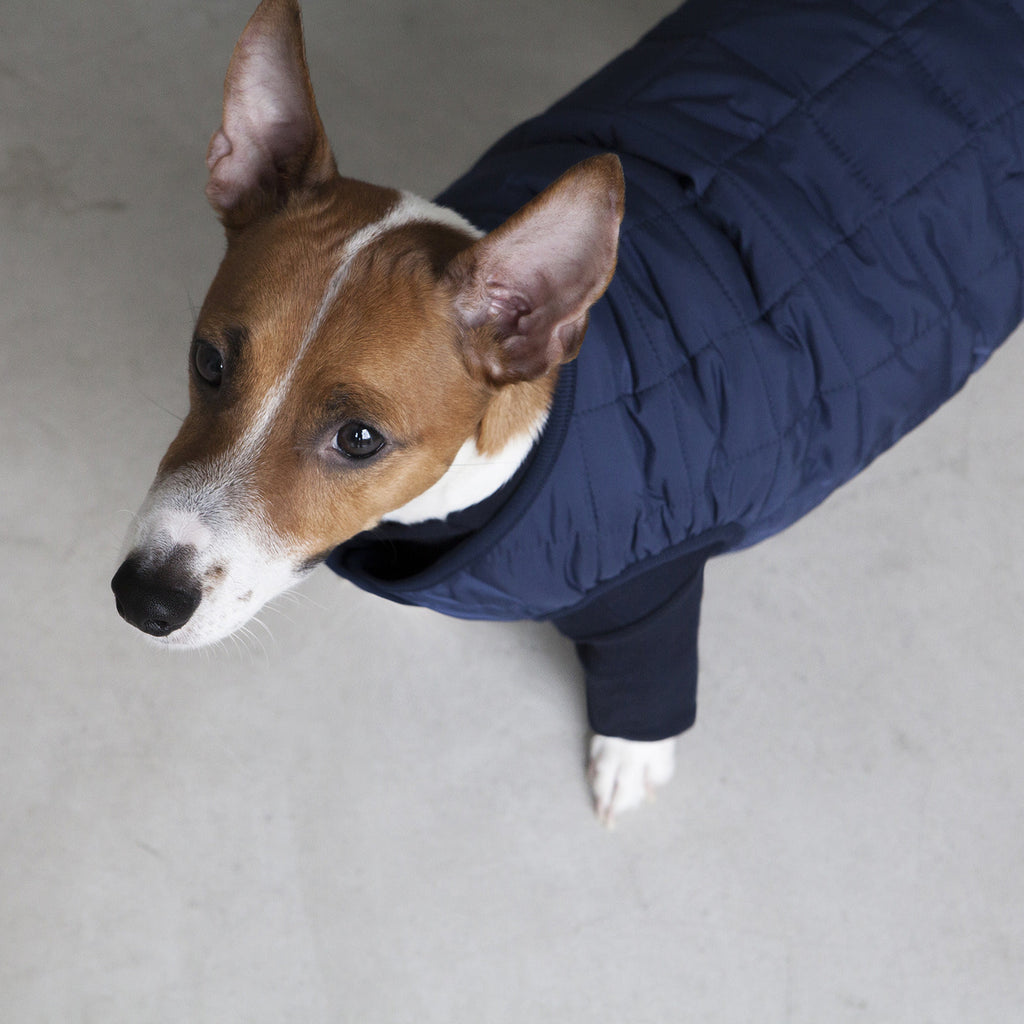 DENTISTS APPOINTMENT | Warm Quilted Vest in Navy (w/ Harness Hole)