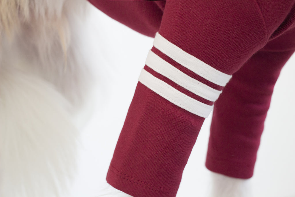 DENTISTS APPOINTMENT | Striped Point Turtleneck in Burgundy