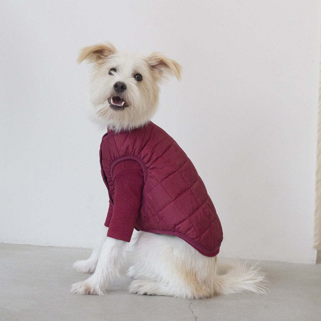DENTISTS APPOINTMENT | Warm Quilted Vest in Burgundy (w/ Harness Hole)