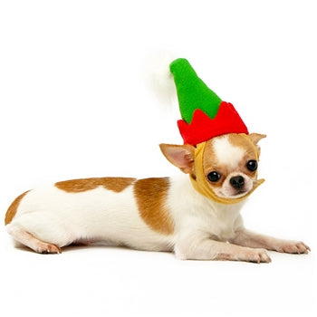 DOGO | Elf Hat