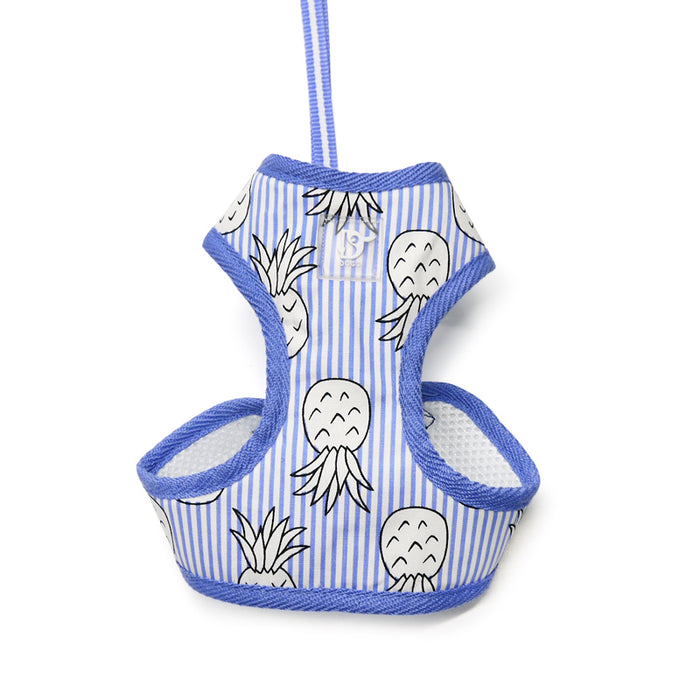 DOGO | Pineapple Harness in Blue