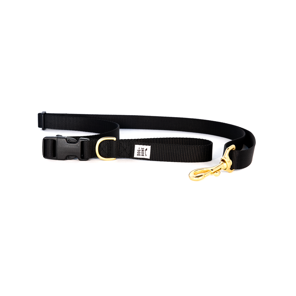 DOG + BONE | Adjustable Leash in Black