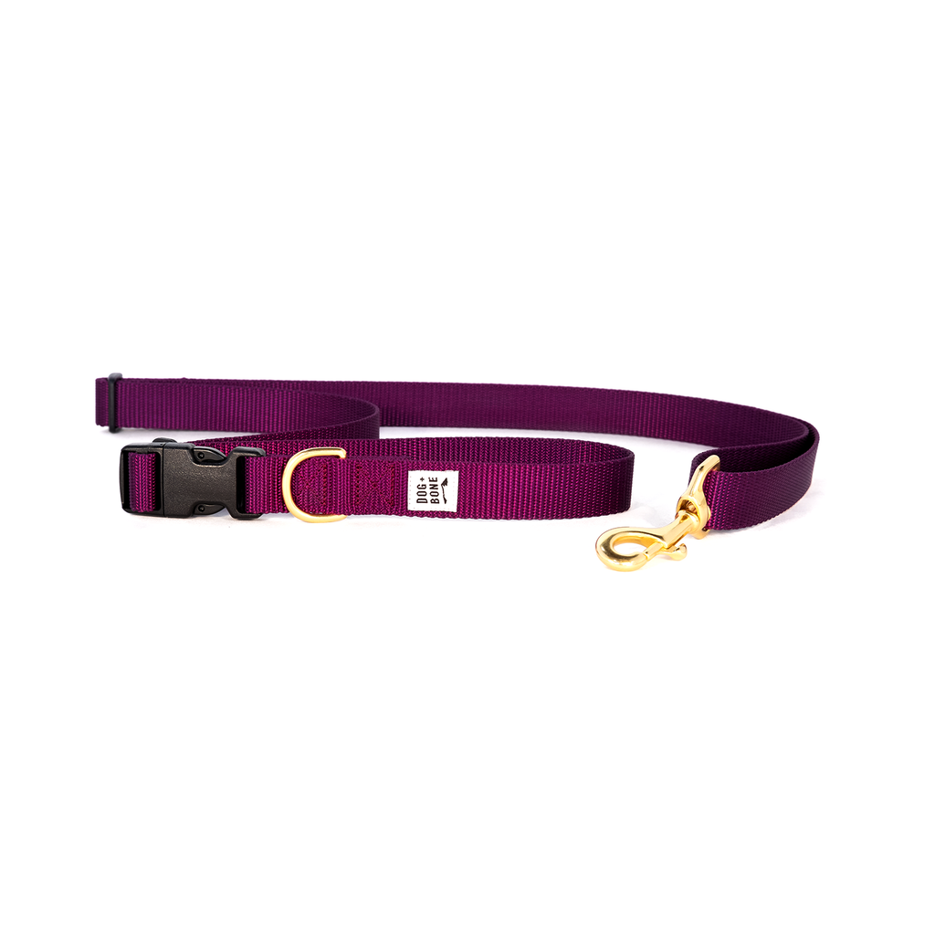 DOG + BONE | Adjustable Leash in Purple