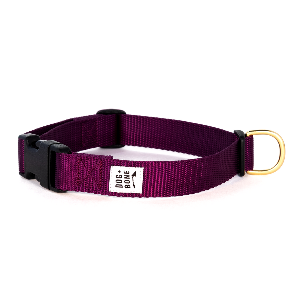 DOG + BONE | Snap in Collar in Purple