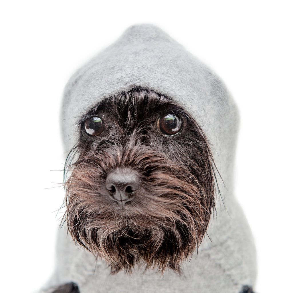 The Marmalady Cashmere Dog Hoodie in Brume Grey