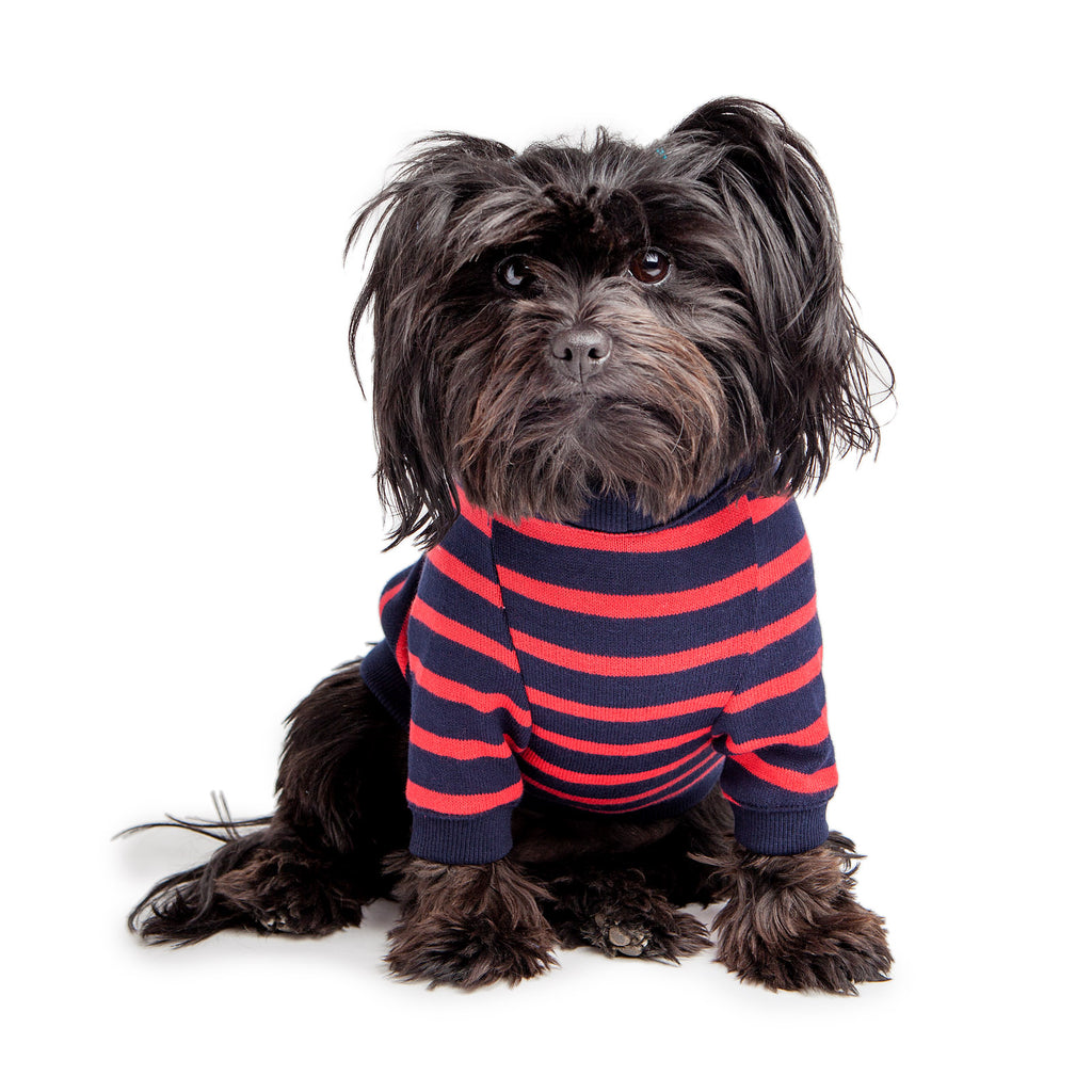 DOG & CO. | Cheeky Stripe Pullover in Navy & Red Small Stripe