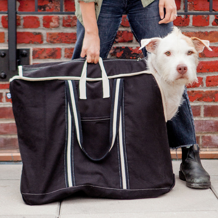 DOG & CO. | City Carrier Bag in Size 4 (Black Canvas or Navy Canvas)
