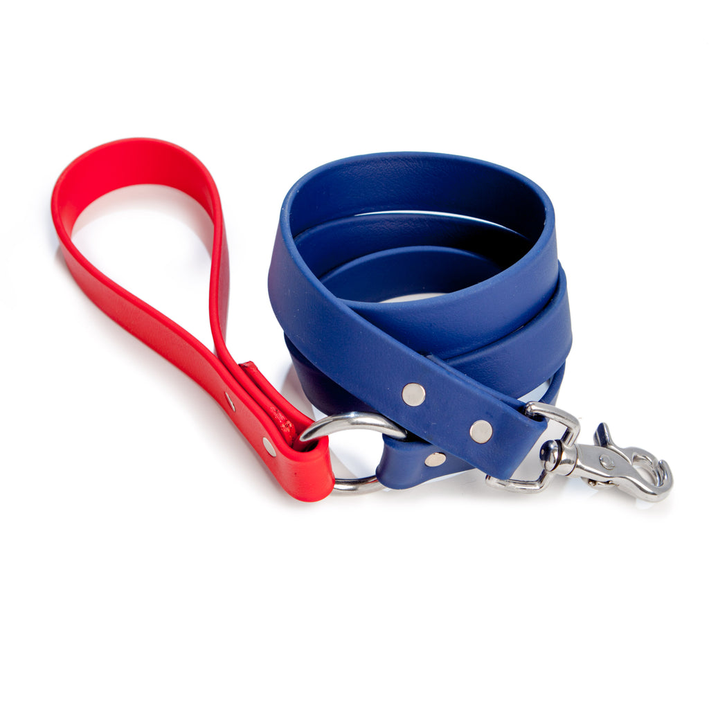 City Leash in Red & Navy