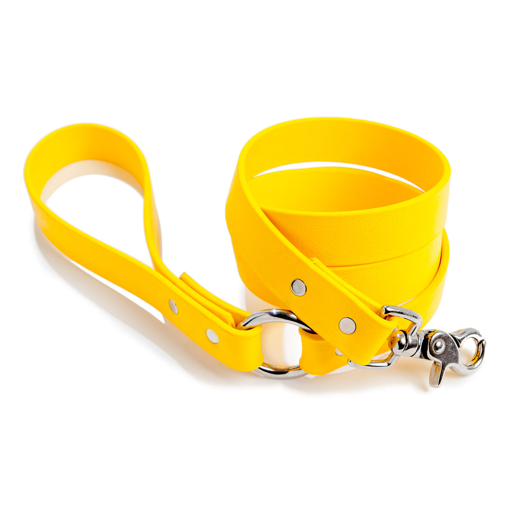 City Leash in Golden Yellow