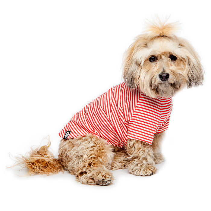 DOG & CO. | Perfect T in Red & White Stripe