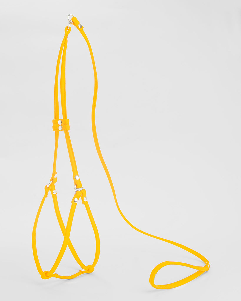 Step-In Harness in Yellow