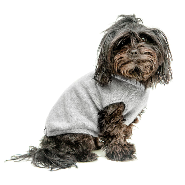 DOG & CO. | The Marmalady Cashmere Hoodie in Brume Grey