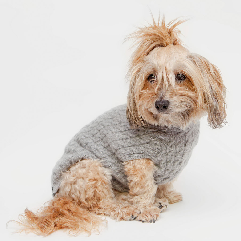 The Topo Cashmere Cable Knit Dog Sweater in Brume Grey