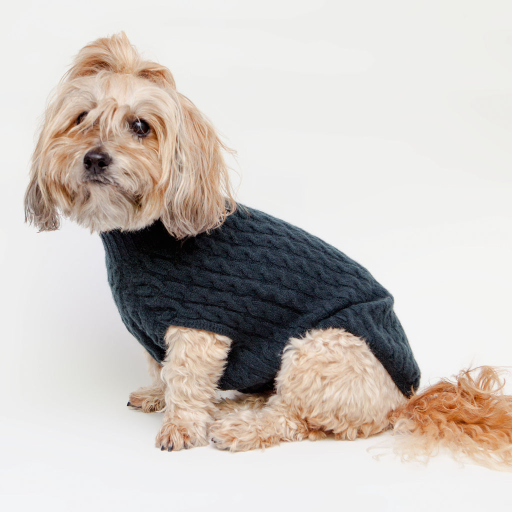 The Topo Cashmere Cable Knit Dog Sweater in Nightwatch Green (FINAL SALE)