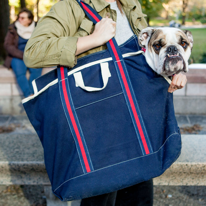 DOG & CO. | City Carrier Bag in Size 3 (Black Canvas or Navy Canvas)
