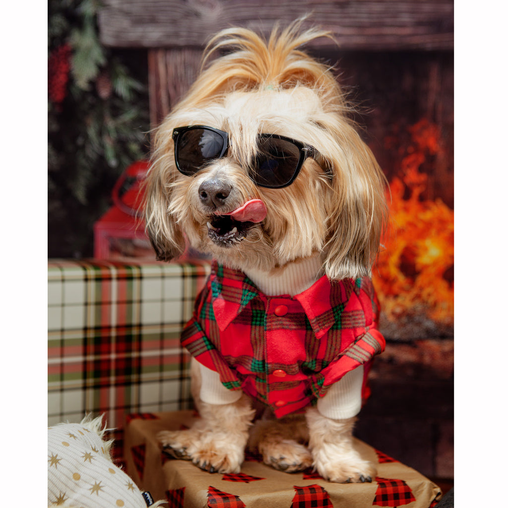 DOGO | Red and Green Flannel Shirt
