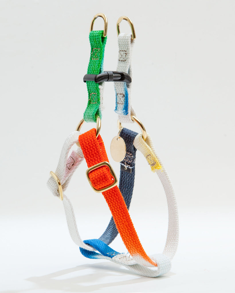 Cotton Webbing Harness in Dog & Co. Ombre