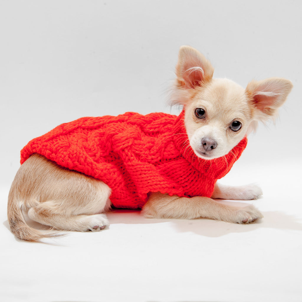 Hand Knit Turtleneck Sweater in Papaya Electric (Dog & Co. Exclusive) (FINAL SALE)