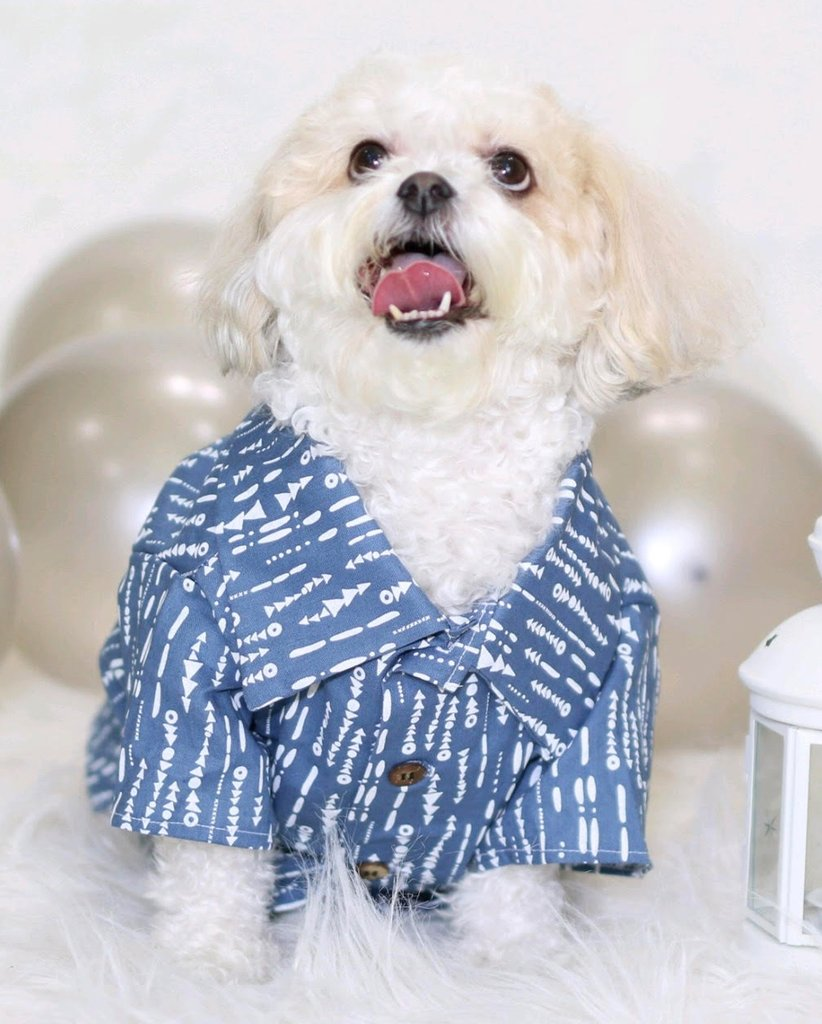 DOG THREADS | Riviera Chambray Shirt