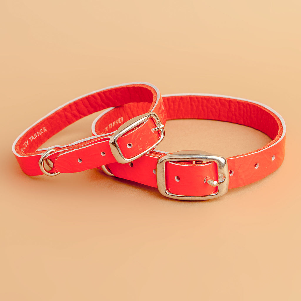 The Cleo Leather Tag Collar in Fluoro Red (Dog & Co. Exclusive)