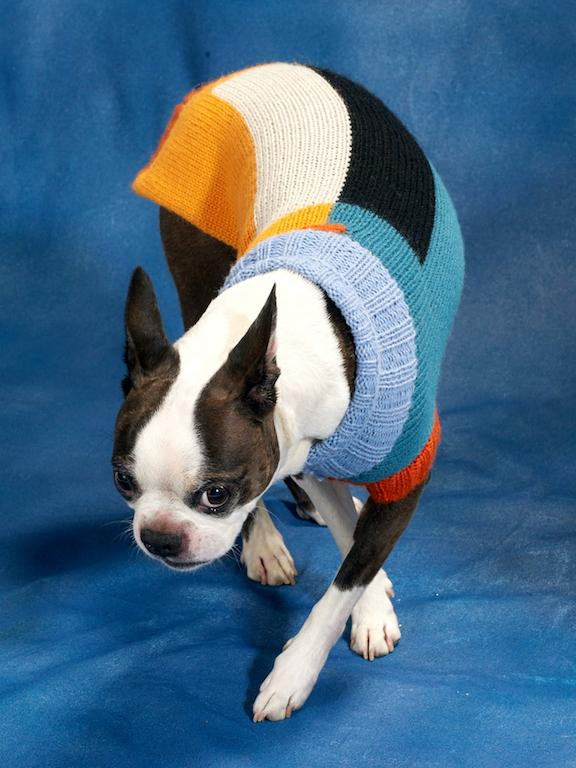 DUSEN DUSEN | Block Dog Sweater