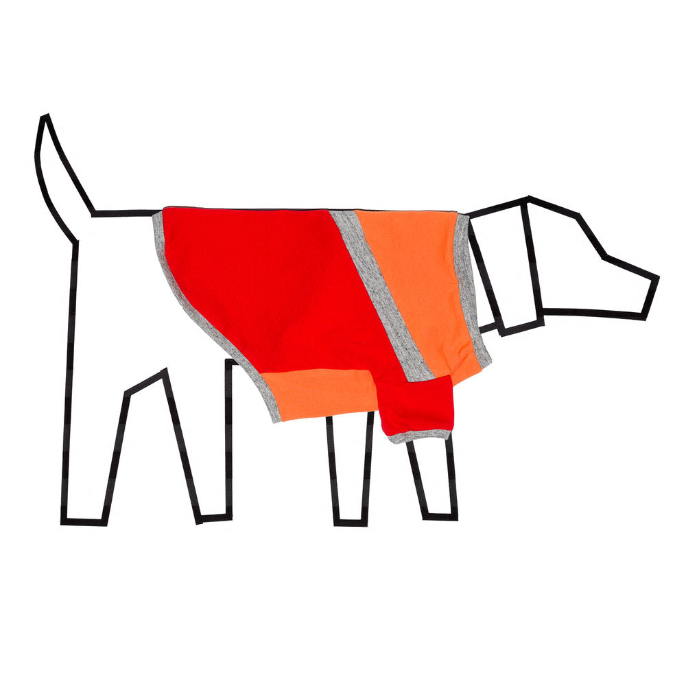 WARE of the DOG | Diagonal T Shirt in Orange and Red