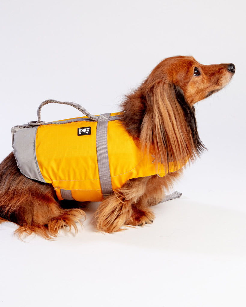 Life Savior Dog Life Jacket in Golden Yellow
