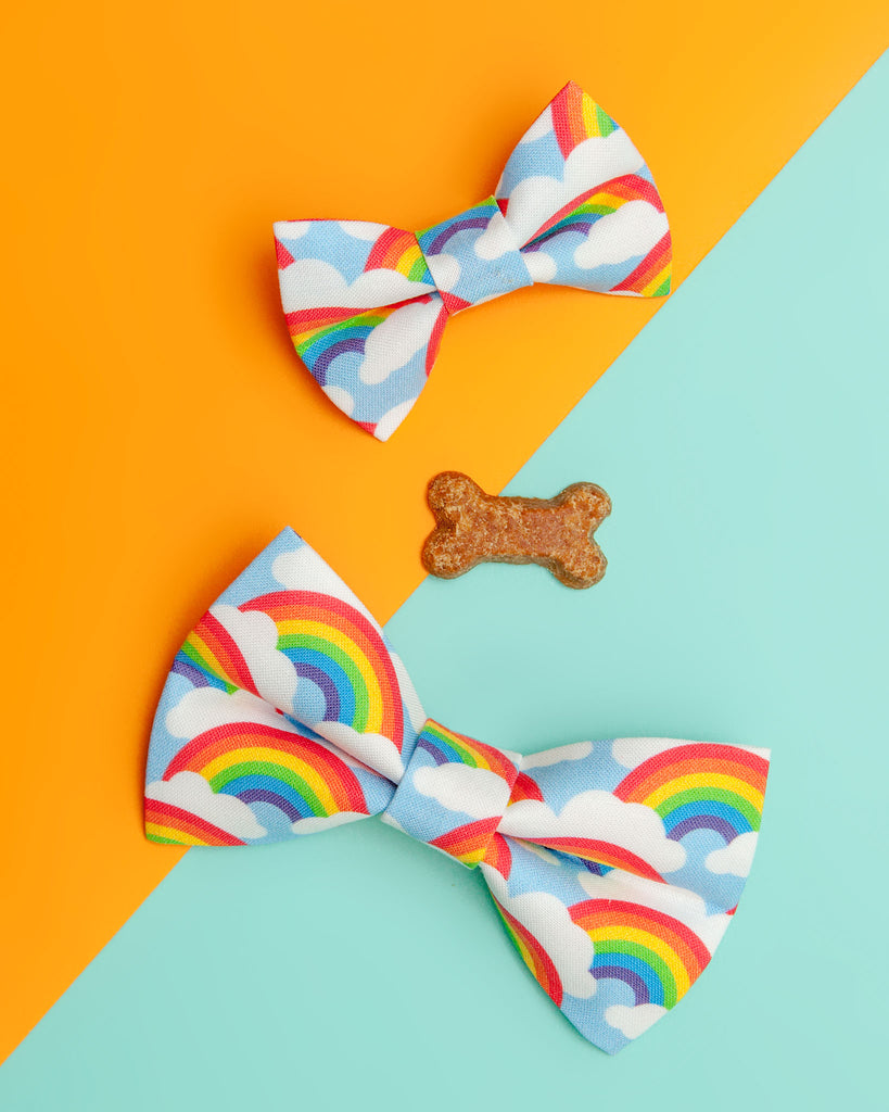 The Bright Side Rainbow Bow Tie