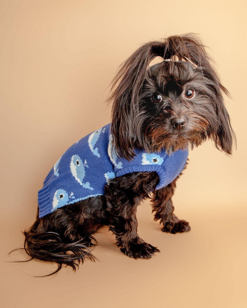 Fuzzy Whale Dog Sweater