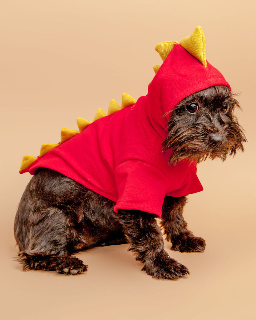 Doggie Dragon Sweatshirt