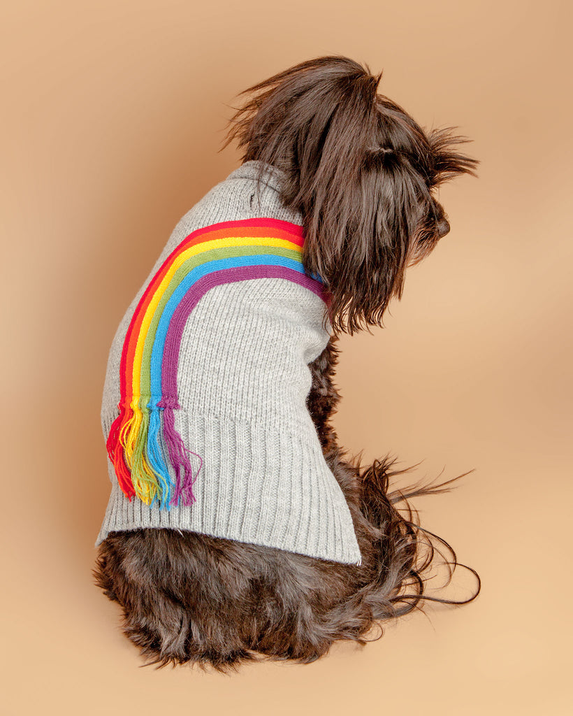 Rainbow Fringe Knit Dog Sweater