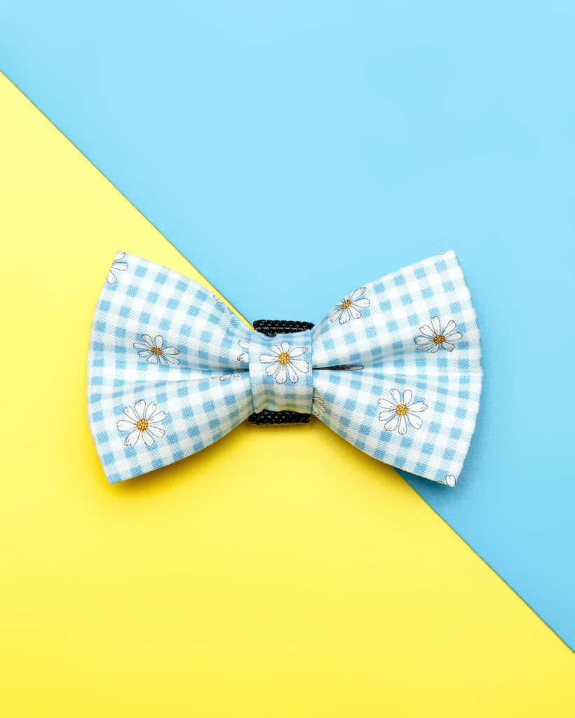 Dog Bow Tie in Blue Daisy