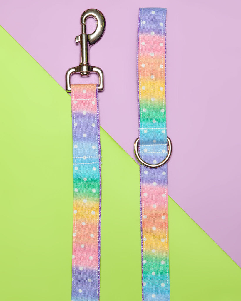 Pastel Rainbow Ombre Dot Print Print Dog Leash